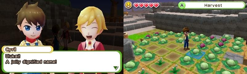 Harvest Moon Skytree Village Cyril-nimi ja kaalit
