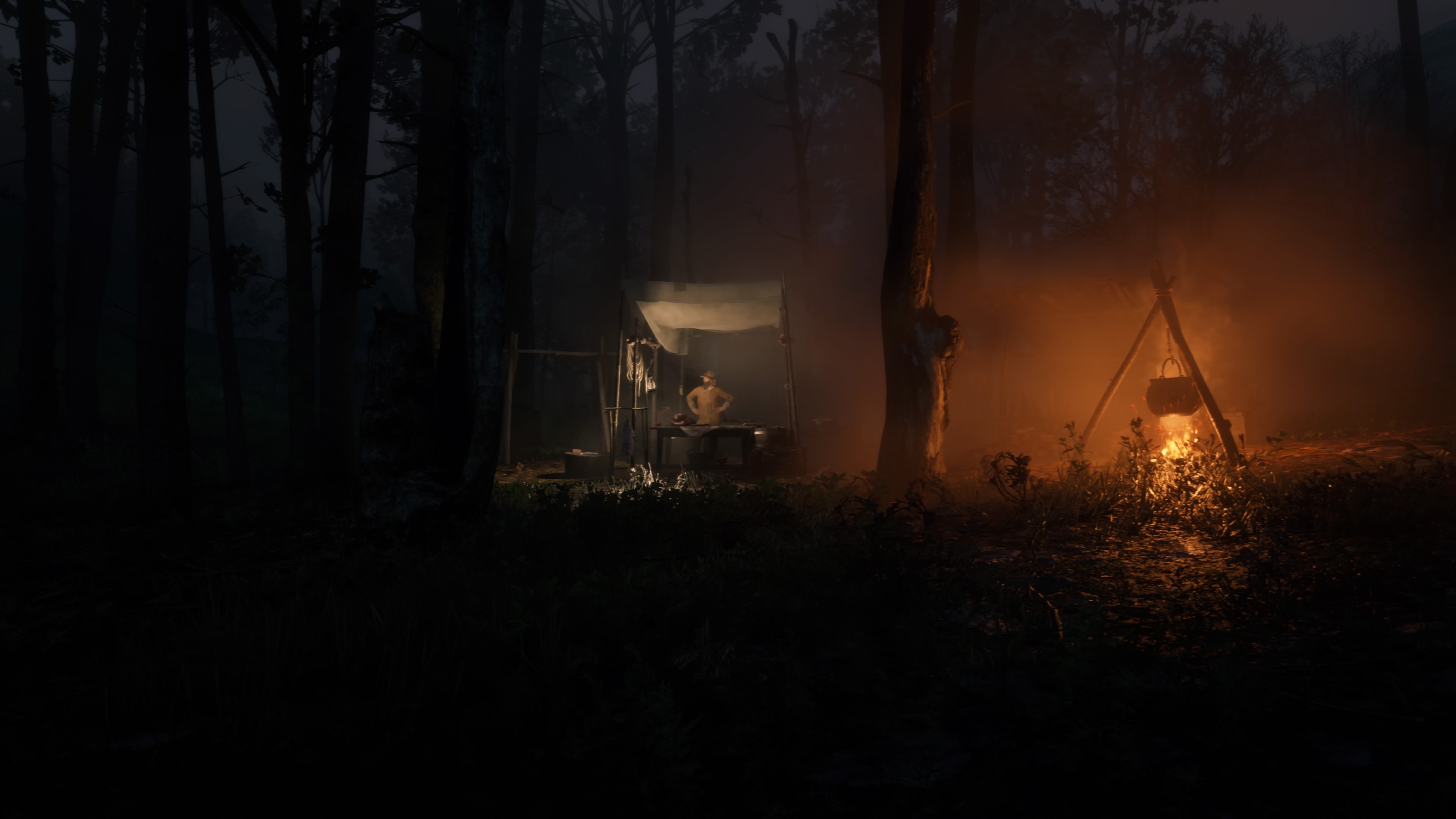 Red Dead Redemption 2 yön trapper