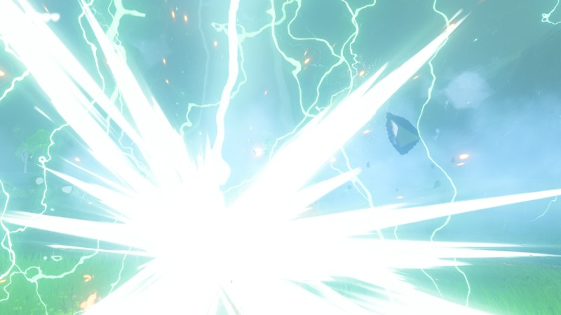 The Legend of Zelda Breath of the Wild Salamanisku
