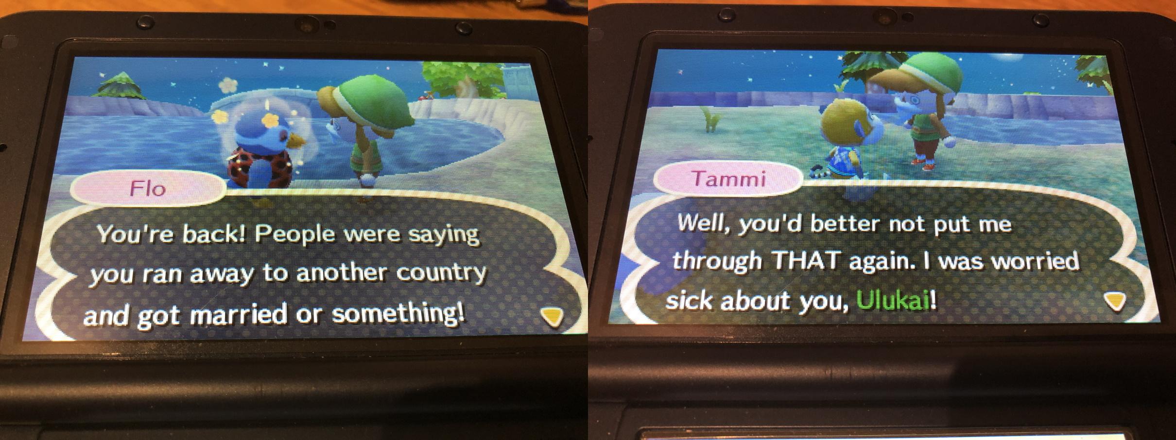 Paluu Animal Crossing -kylään 3
