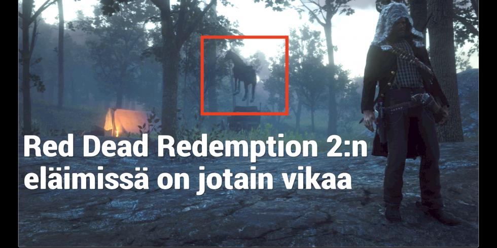 Red Dead Redemption 2 eläimissä on jotain vikaa