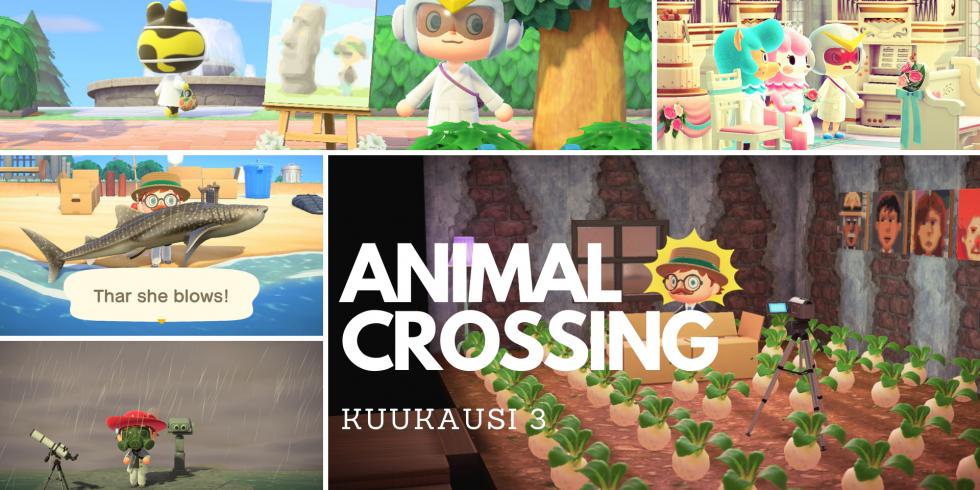 Animal Crossing: New Horizons kolmas kuukausi kuvina