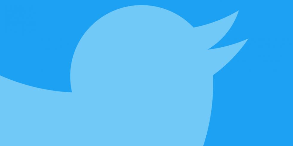 Twitter sininen kuva linnusta