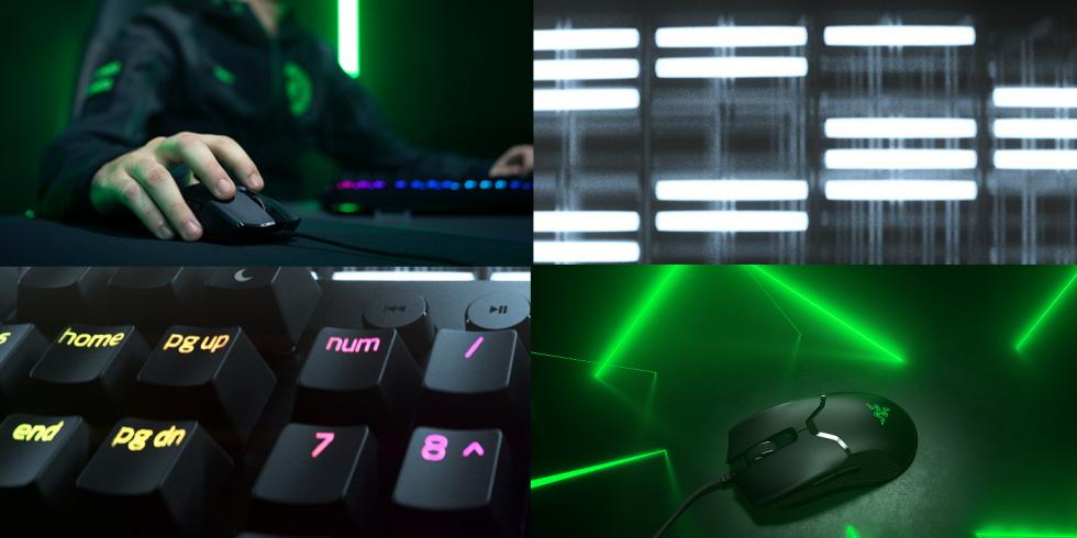 Razer Huntsman Analog V2 ja Razer Viper 8KHz