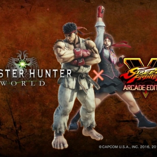 Monster Hunter: World x Street Fighter V