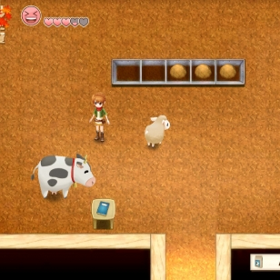 Harvest Moon Light of hope 7.jpg
