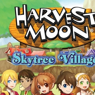 Harvest Moon Skytree Village kansi