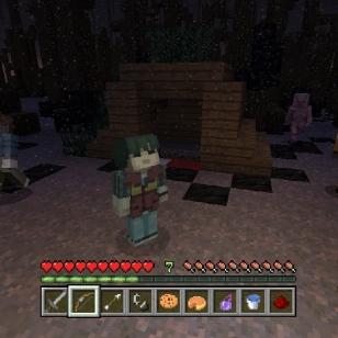 Minecraft Skins Pack 4.jpg