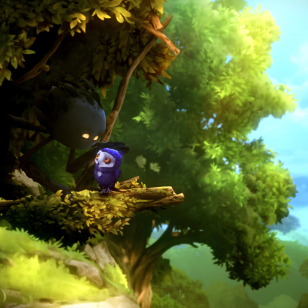 Ori and the Will of the Wisps (28).png