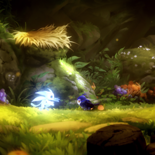 Ori and the Will of the Wisps (29).png