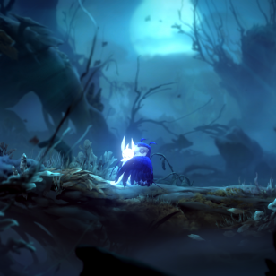 Ori and the Will of the Wisps (6).png