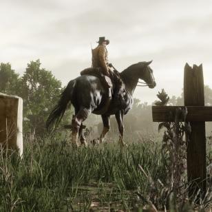 Red Dead Redemption 21.jpg