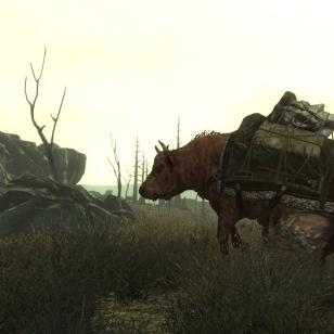 Tusina kuvaa Fallout 3:sta