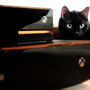 Luukku 15: Arkea ja juhlaa Xbox Onen kanssa