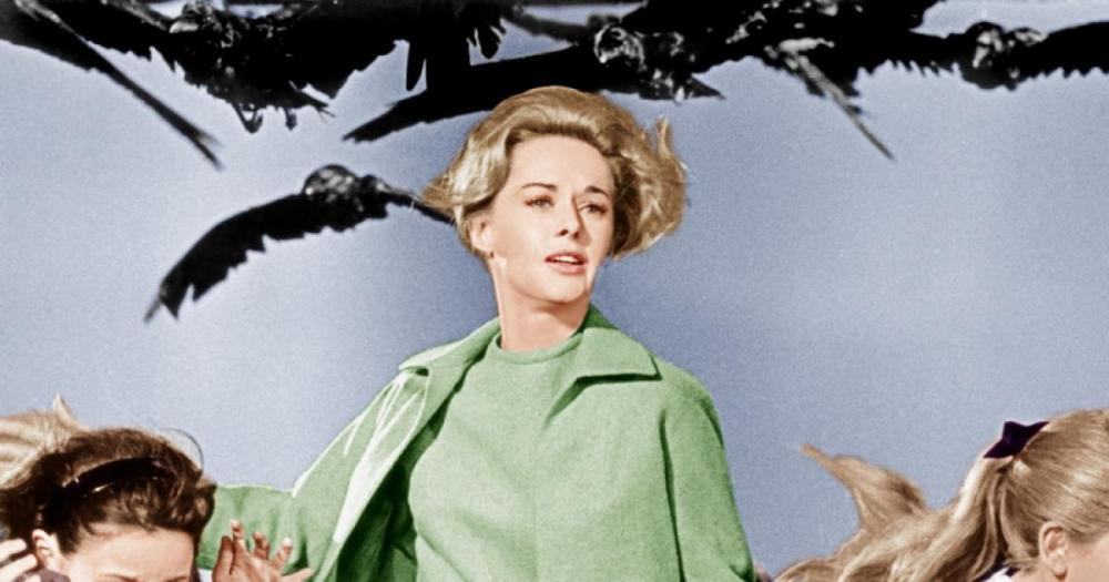 Hitchcock Linnut